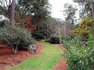 Wintergarden on Visit MBG page