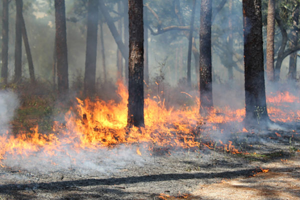 LPF-controlled-burn-672x448_opt