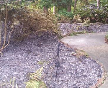 Firework damage header