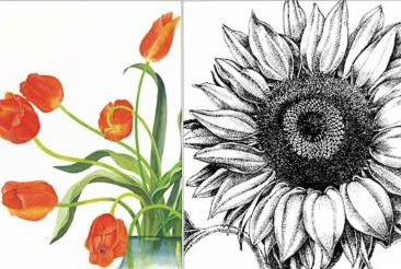 Botanical Art - Copy