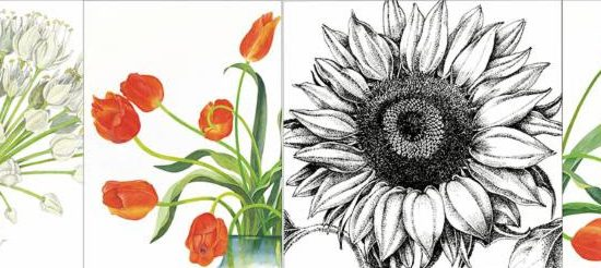 Botanical Art - Copy