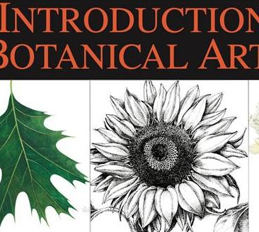 Botanical Art image002 - Copy