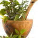 Gulf Coast Herb Society Meeting