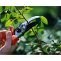 Restoring Order: Pruning Demonstration