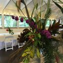 From the Gardens: Floral Arranging with Dennis Harris (5-week Series)