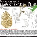 Botanical Art Class – The Art of the Pencil