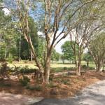 ReBloom Garden