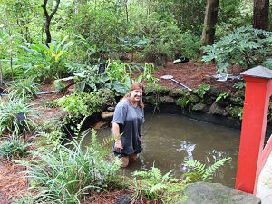 Kirsten knee deep in the Koi Pond 2014