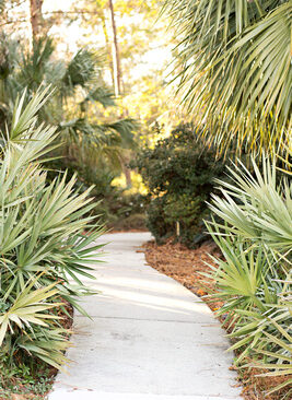 Mobile Botanical Gardens. Copyright Elizabeth Gelineau